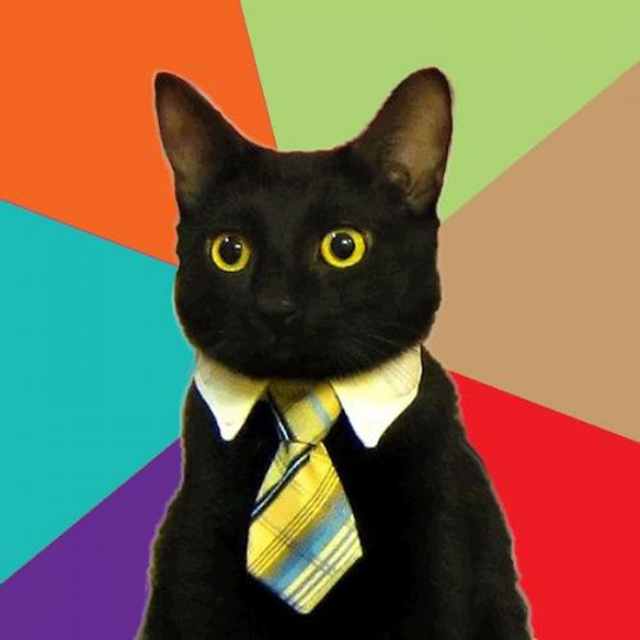 File:Business cat.jpeg