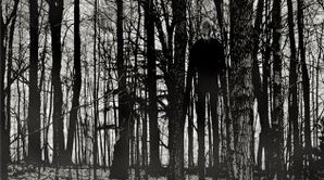 Slender Man In Forest.jpg